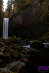 a040 (Photos by Wesley Edward Clark) Tags: oregon silverton waterfalls scottsmills abiquacreek abiquafalls