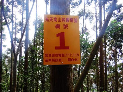 向天湖光天高山 (48).jpg