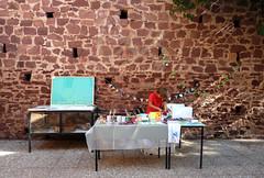 ,.,.first assistant ('Art & Natura') Tags: outside exhibition festivity sundaymarket pau