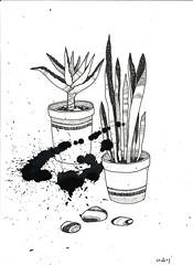 (ALBMA dream) Tags: anna plants stone cacti graphics graphic drawings blot gavrilyuk alabamadream albma annagavryilyuk