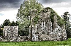 Quin Abbey Churchyard (MROEDEL) Tags: ireland southwest building tree church stone vines ruins clare abby churchyard quin ruined sacked roedel
