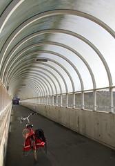 bicycle bridge Tivoli - Leuven (Kristel Van Loock) Tags: bridge bike bicycle leuven tivoli belgium belgique belgië tunnel ponte bici belgica vélo louvain fiets flanders belgien bicicletta belgio rode biciclette vlaanderen diepte flandre vlaamsbrabant redbike overkapping lovanio fiandre fietsersbrug leveninleuven