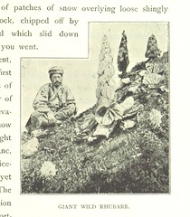 Image taken from page 207 of 'Among the Himalayas ... With numerous illustrations by A. D. McCormick, the author, etc' (The British Library) Tags: bldigital date1899 pubplacelondon publicdomain sysnum003825150 waddelllaurenceaustine medium vol0 page207 sherlocknet:tag=nature sherlocknet:tag=office sherlocknet:tag=side sherlocknet:tag=water sherlocknet:tag=rock sherlocknet:tag=city sherlocknet:tag=power sherlocknet:tag=differ sherlocknet:tag=work sherlocknet:tag=country sherlocknet:tag=hand sherlocknet:tag=october sherlocknet:tag=year sherlocknet:tag=care sherlocknet:tag=place sherlocknet:tag=white sherlocknet:tag=import sherlocknet:category=organism