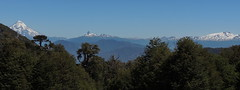 Panorama Cuesta Los Chilcos (Mono Andes) Tags: chile panorama volcano andes volcán volcanoe lanín chilecentral regióndelaaraucanía volcánquetropillán colmillodeldiablo