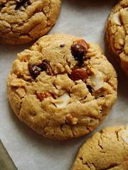Almond Butter, Dark Chocolate & Coconut Cookies (ComeUndone) Tags: cookies dessert baking cookie coconut almond butter darkchocolate almondbutter ghirardellidarkchocolate food52