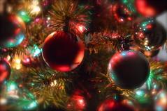 Merry Xmas! ho ho ho (lu.chy) Tags: xmas trees red tree green colors natal cores arbol happy navidad nikon flickr colores explore explored d3200 colorvibefilter