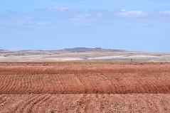 DSC_0210 (Luca Marrucci) Tags: madrid orange tractor landscape spain nikon europe desert farm postcard ground zaragoza land plow terra arid spagna aratro trattore rossa aragona d90