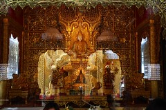 "yangon_014 (ppana) Tags: hti lake"" palace"" ""golden rock"" tan"" pagoda"" an"" ""mrauk u"" yo"" ""buddha ""shwedagon ""buddha"" footprint"" ""victoria"" ""yangon"" ""amarapura"" ""myanmar"" ""burmar"" ""mingalaba"" ""pegu"" ""shwethalyaung"" ""kyaikpun"" reclining"" ""kyaikhtiyo"" ""kyaikpawlaw"" ""shwemawdaw"" ""novice"" ""kanbawzathadi"" ""rangoon"" ""bago"" ""kyaik ""than lyin"" ""hpa ""mawlamyine"" ""kyauk ""pathein"" ""thandwe"" ""ngapali"" ""kalaw"" ""popa"" ""heho"" ""inle ""taunggyi"" ""bagan"" ""sittwe"" ""saggaing"" ""mingun"""