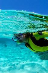 csh13368.jpg (michaelnikolaev1) Tags: redsea snorkeling snorkelling reef snorkeller snorkeler