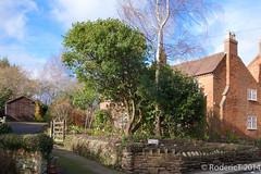 140308-DSC00107 Inkberrow Worcestershire.jpg (rodtuk) Tags: uk england house buildings places worcestershire lc midlands b23 inkberrow phototypes laurelcottage inkberrowvillage roderickt roderict