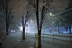 IMG_5622 (Thomo13) Tags: street white snow storm japan night tokyo yuki roppongi 2014 gettyimagesjapan14q1 {vision}:{outdoor}=0948