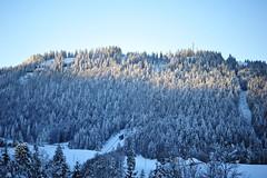 Paysages 7 (Benoit ANCELIN) Tags: nature jura neige paysage hivers rousses
