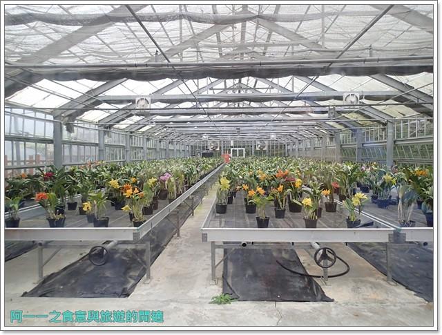 南投溪頭自然教育園區台大image129