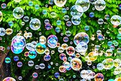 Buller (Matthieu Douhaire) Tags: green canon garden spring rainbow colours couleurs jardin environmental vert 7d printemps bulles bubles environement canon70200f4