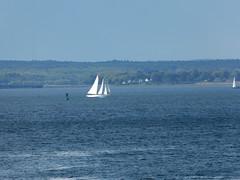 Sailboat in the Portland Harbor (lucre101) Tags: ocean sea usa sailboat america port portland bay sailing maine atlantic boating sail casco