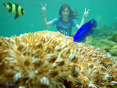 L-Q5-02-12_12h17'33''_[WB_FM1886]__LL©® (fm&hg) Tags: blue fish black nature girl face sign sport yellow coral fauna female swimming swim hair asian fun happy person marine asia pretty peace underwater close symbol action body turquoise philippines under dive young lagoon hobby adventure clear teen swimmer teenager leisure diver recreation reef watersea