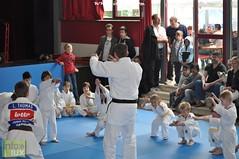 Judo-habay023