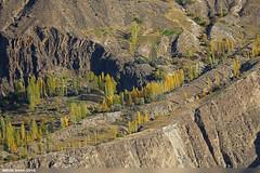 Miachar, Nagar (gilgit2) Tags: trees pakistan canon landscape geotagged rocks tags location elements vegetation greenery tele hunza nasirabad gilgitbaltistan canoneos650d imranshah canonefs55250mmf456isii gilgit2