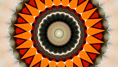 Orange Passion (Kombizz) Tags: red orange samsung kaleidoscope passion photoart epa 609 experimentalart orangepassion kombizz samsunggalaxy experimentalphotoart fxabstract
