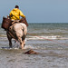 "2015_08_07_Paardenvissers_Oostduinkerke-18 • <a style=""font-size:0.8em;"" href=""http://www.flickr.com/photos/100070713@N08/20216053470/"" target=""_blank"">View on Flickr</a>"