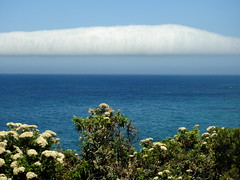 Part of the long cloud - Apollo Bay