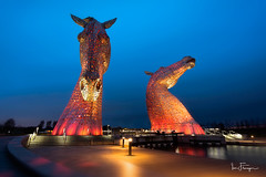 The Kelpies (© Ian Flanagan) Tags: thekelpies scotland blue hour falkirk sculptures horse head artwork