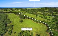 Proposed Lot 11 Possum Creek Ridge, Bangalow NSW