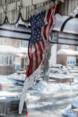FROZEN STARS AND STRIPES (BUSTER NYC) Tags: flag ice stars stripes american frozen cano 70d winter