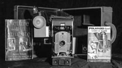 Land Camera (skysinger) Tags: mediumformat rollfilm filmbw tmax filmkodaktmax400 kodak bwfilm blackwhite camera mamiyarz67proii