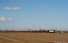 Tramoggione Train! (Massimo Minervini) Tags: e652 e652154 e652mir mir mercitalia carritramoggia grano sansavino cremona lineacremonamantova trenomerci pianurapadana ferrovia rail railroads train trenes trenitalia fs canon400d
