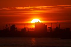 Früh morgens an der Elbe (Lilongwe2007) Tags: hamburg deutschland elbphilharmonie wasser sonnenaufgang silhouetten architektur hafen kräne wolken himmel