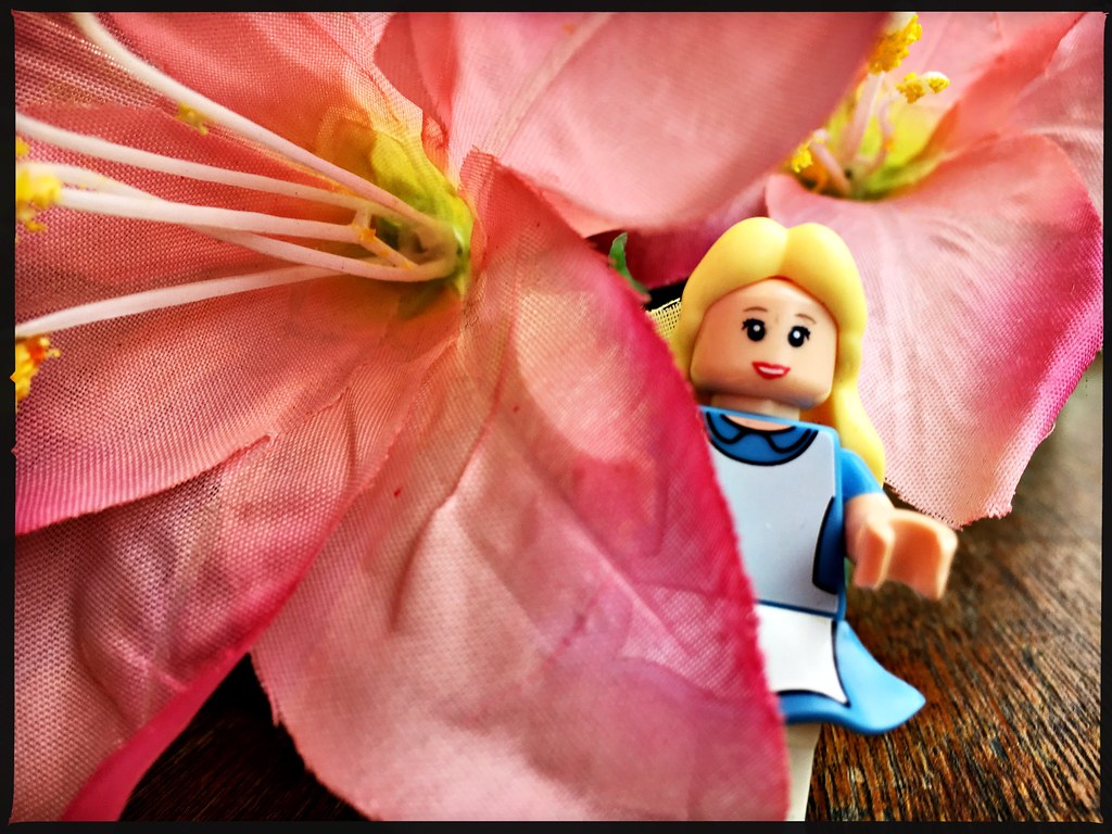 The Worlds Newest Photos Of Minifigure And Silk Flickr Hive Mind