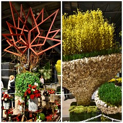 Sesquicentennial Anniversary (Left) and East Meets West Right), Floral Alley, Canada Blooms, Enercare Centre, Toronto, ON (Snuffy) Tags: floralalley canadablooms enercarecentre exhibitionplace toronto ontario canada sesquicentennialanniversary eastmeetswest heartawards