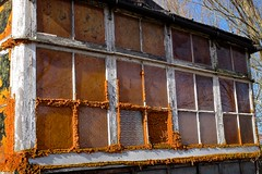 It's life, Jim, but not as we know it! (violetchicken977) Tags: windows weathered decay abandoned neglected fungi peelingpaint