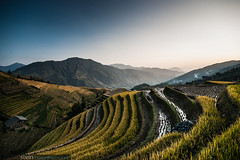 Rice Field in China [Explored] (no.zomi) Tags: asien china reisfelder welt asia rice field sony zeiss za a900 explore tiantouzhai longshengguilinguangxichina variosonnar163528za sonnar carl carlzeiss