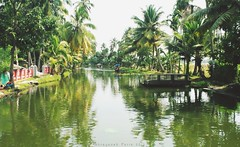 A Way to God's Own Country (Shrayansh Faria Photography) Tags: backwaters waters trees sky shadows