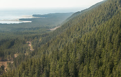 20130506D8E_3482 (cisco42) Tags: ocean trees summer lighthouse mountain canada sunshine forest coast bc britishcolumbia shoreline rocky vancouverisland northamerica saltwater lightstation2013