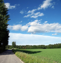 (SofiDofi) Tags: road blue light sky sunlight nature grass june clouds outdoors woods pretty shadows walk fields ise beautifulday summer2009