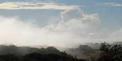 Hot winter fog (dustaway) Tags: sky mist fog clouds landscape earlymorning australia bluesky nsw northernrivers morninglandscape wyrallah