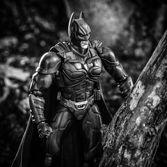 BW-168 Batman: The Dark Knight Rises (misterperturbed) Tags: batman dccomics darkknight playartskai darkknightrises darkknighttrilogy