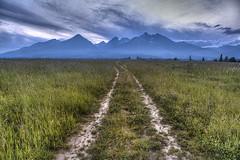 Road to the mountains (murphyz) Tags: travel mountains field europe hiking trail slovakia tatra hightatras