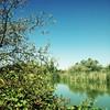 #MyWalkToWork (omari hagan) Tags: trees sky sun water reflections g2 mywalktowork hipstamatic blankofreedom13 oggl
