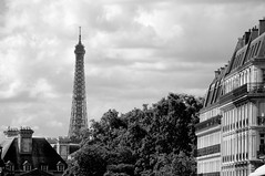 paris (c h r i s t o s) Tags: blackandwhite bw france building nikon europe apartment rooftops eiffeltower pantheon block 5arr ruesouflott