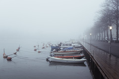 Foggy boats (Mikko Miettinen) Tags: autumn sea mist cold tree water fog suomi finland helsinki day cloudy foggy baltic serene nordic tranquil meri maisema syksy moist puita sumu sumuinen 2013 vett mikkomiettinen kostea nikkorais50mmf12 nikond800