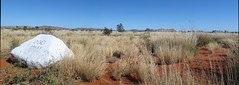 200 miles to Giles.. Pano (spelio) Tags: wa australia beadell sandy blight 2011 june link essay reference desert fave pano good remote nt miles mileage direction 1000