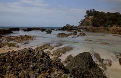 Barlings Beach, South Coast, Australia (Anna Calvert Photography) Tags: ocean sea seaweed beach water coast rocks pacific south australia cliffs pools barlings