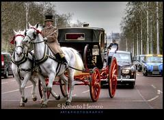 Oops.....The Queen? (RobertoHerrero) Tags: uk horse london carriage trolley royal british buckinham mygearandme mygearandmepremium mygearandmebronze mygearandmesilver mygearandmegold mygearandmeplatinum mygearandmediamond {vision}:{text}=0557 {vision}:{sky}=0609 {vision}:{outdoor}=0764 {vision}:{car}=0607