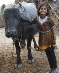 Village Girl and Cow (cowyeow) Tags: travel girls portrait people india cute girl beautiful smile sisters composition happy cow pretty village farm indian young smiles agra friendly potrait younggirls uttarpradesh indiangirl indiangirls