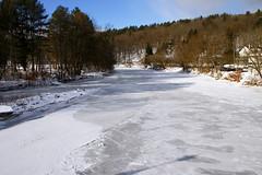 Montpelier 1-9-2014 54 (mikefuscophoto) Tags: winter snow season vermont montpelier