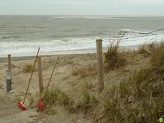 "HFF! ""Fency"" Borkum ;) (petrOlly) Tags: sea beach water strand fence germany island deutschland spring sand europa europe northsea friday nordsee borkum hff fencedfriday happyfencedfriday"